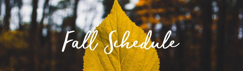 Fall yoga new classes Sculpt HIIT Nidra Yin Donation Class